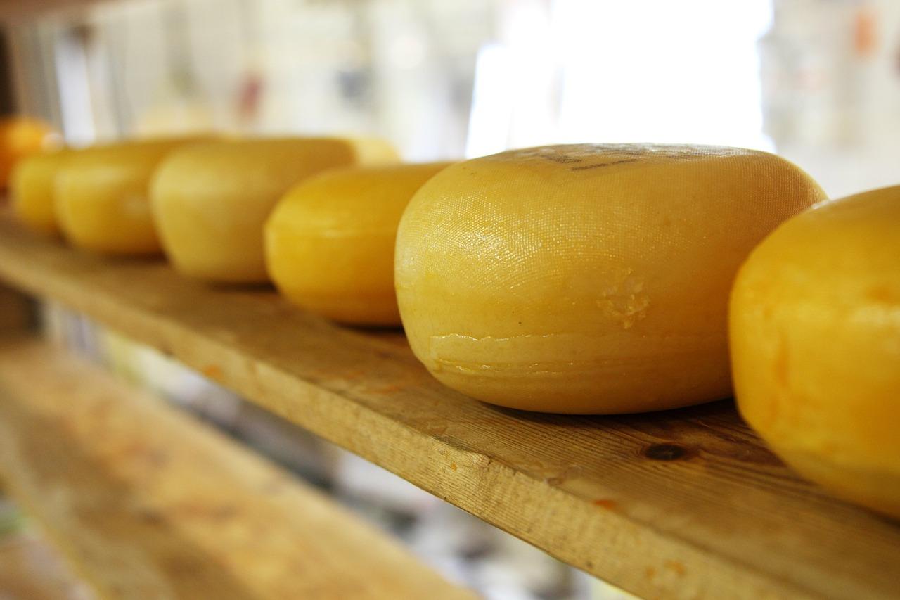 cheese 2785 1280